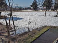 雪消えが一気に! - 浦佐地域づくり協議会のブログ