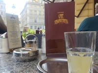 2017年 ウィーン・シュヴェヒャート空港見学デッキ - ザルツブログ ザルツブルク在住者による、グルメ・文化・旅行の贅沢写真日記