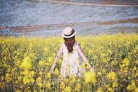 健康的な成熟を促す~フェアリーランタン - 旅の音色~花のしずくとつれづれに~