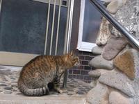 女の勲章 - シェークスピアの猫