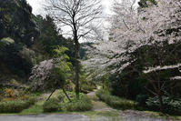 太平記を歩く。 その42 「勝楽寺城跡」 滋賀県犬上郡甲良町 - 坂の上のサインボード