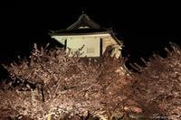 金沢城公園 - 今日の空+α2