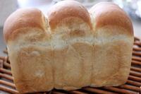 ソフト食パンの試作 - オーブン手帖