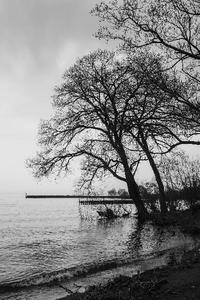 雨の日*琵琶湖 4 - 気ままにお散歩