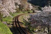 わたらせ渓谷鉄道・・・その3 - 四季の予感