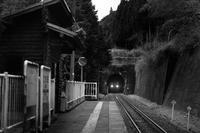 にわか撮り鉄(樽見鉄道) - 父ちゃん坊やの普通の写真その2