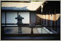 谷根千 -84 - Camellia-shige Gallery 2