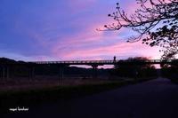 夕焼け - 長い木の橋