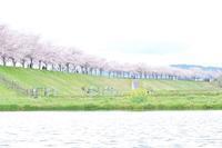 水彩画の春景色 - Shadow