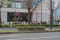 種子法廃止反対 パリテ・マーチ テントひろば - ムキンポの exblog.jp