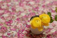 集英社「OurAge」連載コラム4月 - la fleur ラ・フルール