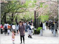 京都・白川通りをぶらぶら歩き -   陶  工  房 「 ね む り 観 音 」