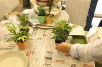 苔玉作りのワークショップのご報告 4.18 - 北赤羽花屋ソレイユの日々の花