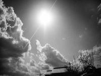 夏の陽気 - 空を見上げて