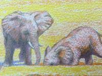 吉田遠志の動物絵本 12  象の家族「よびごえ」 - 象を読む人 象を書く人