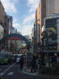 神戸・いきなりステーキ・串焼焼鳥TORIDORI 神戸三宮 - 裏LUZ