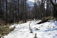 外気温2度の戦場ヶ原 - 山歩風景