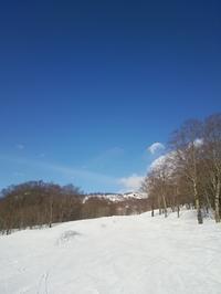 たんばらスキー場 - Les feuilles du coeur