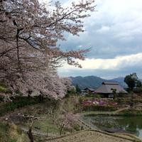 2017 春 愛媛への旅 Vol.5 - ささやかだけれど役にたつこと
