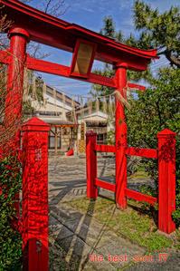 新光町の白山神社 - the best shot Ⅳ