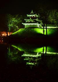 高田公園夜桜 - 鳥見って・・・大人のポケモン