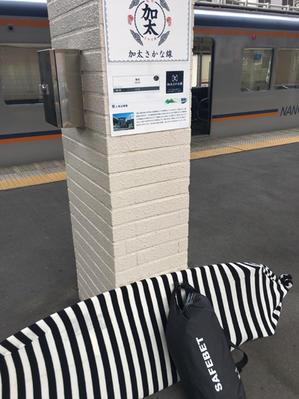 4月18日 磯ノ浦 今年初ひとり電車サーフィンと水を得た鯛 - くろかめのつぶやき~女性初心者サーフィン日記~