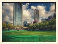 東遊園地の芝生広場 - 「今日の一枚」