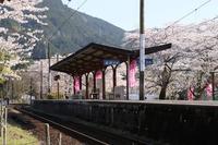 徳山の桜・6♪ ~駿河徳山駅その一~ - happy-cafe*vol.2