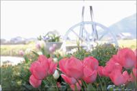 花のガーデン1 ** - ふわふわ日和