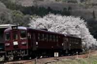 わたらせ渓谷鉄道・・・その4 - 四季の予感