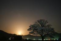 桜と月と時々銀河 - デジタルで見ていた風景