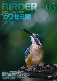 ★BIRDERに吉田くんの記事が… - 葛西臨海公園・鳥類園Ⅱ