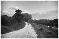 散歩道 - BobのCamera