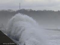 海は大荒れ - Photo Album