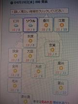 韓国はレベル0(4/20) - ニャンコ座リポート  since 2005 April