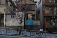 坂の家 - 社会人美大生の写真日記。
