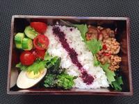 4/20 茄子のソイそぼろ丼弁当 - ひとりぼっちランチ