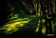 ☆ 石畳の坂 ☆ - Trimming