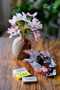 チョコ味比べ ♪ - Lovely Photo