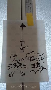 ハル - 猫花雑記