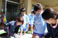 こいのぼり(ゆり) - 慶応幼稚園ブログ【未来の子どもたちへ ~Dream Can Do!Reality Can Do!!~】