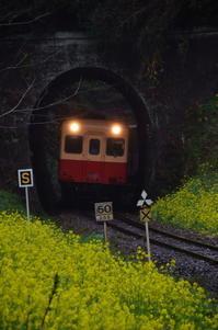 トンネルを抜けるとそこは・・・ - 風の香に誘われて 風景のふぉと缶
