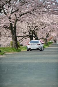 RCとSAKURA - The Digital Photo Stage ~ LEXUS RC & Audi A3の備忘録と時々...工場萌えとDr.Yellow ~