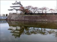 三階櫓と桜模様 - じょんのび