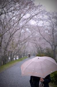 春雨 - 片眼を閉じて見る世界には・・・。