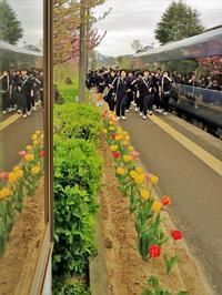 春の遠足 - 今日も丹後鉄道