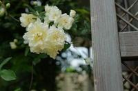 庭撮り設定 - お庭のおと