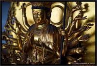 慈眼寺の仏像 - TI Photograph & Jazz