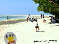 ♪海の声が知りたくて、沖縄へ♪(2) - ぽこあぽこ的生活