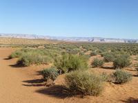 Antelope Canyon - ARIZONA ROOM 別館